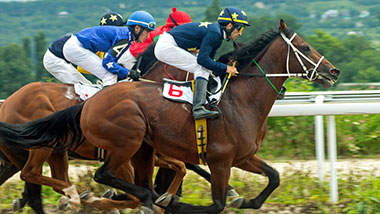 Live Horse Racing | Hollywood Gaming at Mahoning Valley Race Course